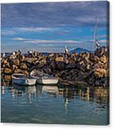 Pelicans At Eden Wharf Canvas Print
