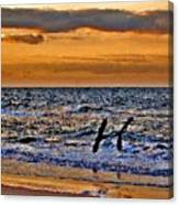 Pelicans Crusing The Coast Canvas Print