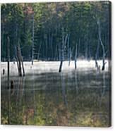 Pemigewasset Wilderness - White Mountains New Hampshire Usa Canvas Print