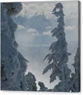 Pend Oreille Thru Fog Canvas Print