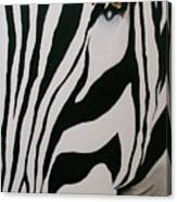 Penguin Eye Canvas Print