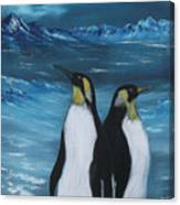 Penguin Family Expectant Again Canvas Print