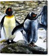 Penguines Original Oil Painting Canvas Print