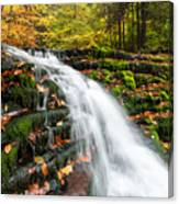 Pennsylvania Autumn Ricketts Glen State Park Waterfall Canvas Print
