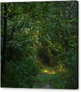 Pennsylvania Path Canvas Print