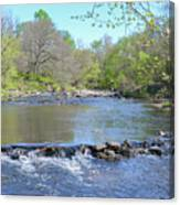 Pennypack Creek - Philadelphia Canvas Print