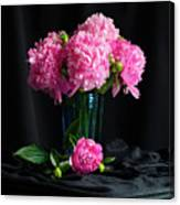 Peonies - Beauty The Brave Canvas Print