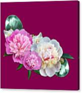 Peonies In Pink And Blue Canvas Print