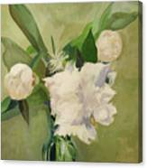 Peonies On Green Canvas Print