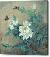 Peony Butterfly Canvas Print