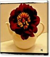 Peony In A Tea Kettle Canvas Print