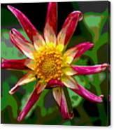 Peppermint Sunburst 2 Canvas Print