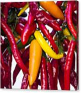Peppers - Farmers Market - Madison - Wisconsin Canvas Print