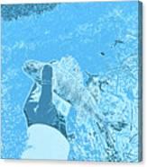 Perch Blue Canvas Print