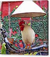 Perched Rooster Canvas Print