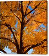 Perfect Autumn Day With Blue Skies Canvas Print
