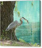 Perfect Catch Canvas Print