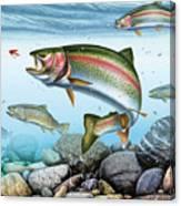 Perfect Drift Rainbow 2 Canvas Print