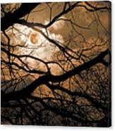 Perigee Moon In The Trees Canvas Print