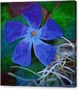 Periwinkle Blue Canvas Print