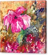 Perky Pink Canvas Print