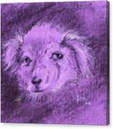 Perro Electrico 1 Canvas Print