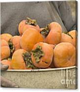 Persimmons In A Bucket Canvas Print