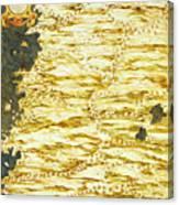 Peru And Ecuador Canvas Print