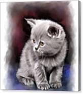 Pet Cat Portrait Canvas Print