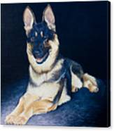 Pet Commission-shaka Canvas Print