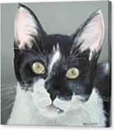 Pet Portrait Painting Commission Tuxedo Cat  Canvas Print