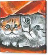 Pet Portraits-two Kitties Canvas Print