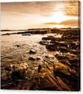 Petal Point Ocean Sunrise Canvas Print