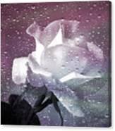 Petals And Drops Canvas Print