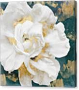 Petals Impasto White And Gold Canvas Print