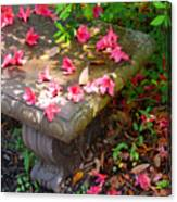Petals On A Bench Canvas Print