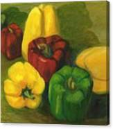 Peter Pifer Has A Lot Of Peppers To Choose From Canvas Print