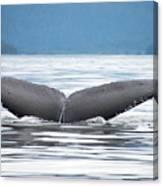 Petersburg Ak Whale Tale 2 Canvas Print