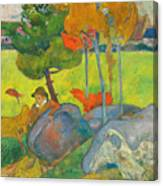 Petit Breton A L'oie Canvas Print