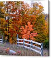 Petoskey Autumn Fence Canvas Print