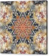 Petrified Snowflake Canvas Print