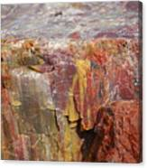 Petrified Wood 2 Canvas Print