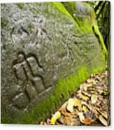 Petroglyphs At An Archaeological Site Canvas Print