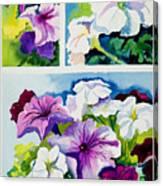Petunias In Summer Canvas Print