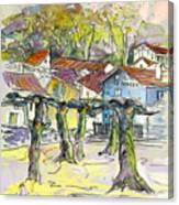 Peyrehorade 03 Canvas Print