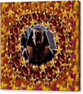 Pharaoh In The Starry Night Canvas Print