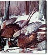 Pheasants Hunt - Sold Canvas Print