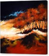 Phenomena 2 Canvas Print