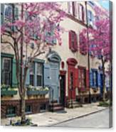 Philadelphia Blossoming In The Spring Canvas Print