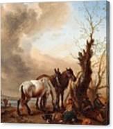 Philips Wouwerman Canvas Print
